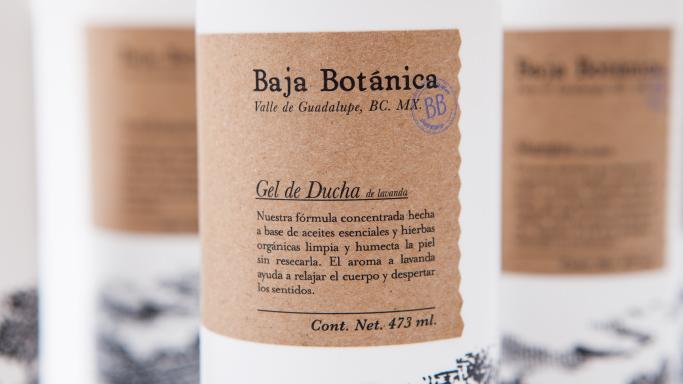 BALMORIA | Baja Botánica
